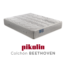 CM11728 bed's Beethoven 2021